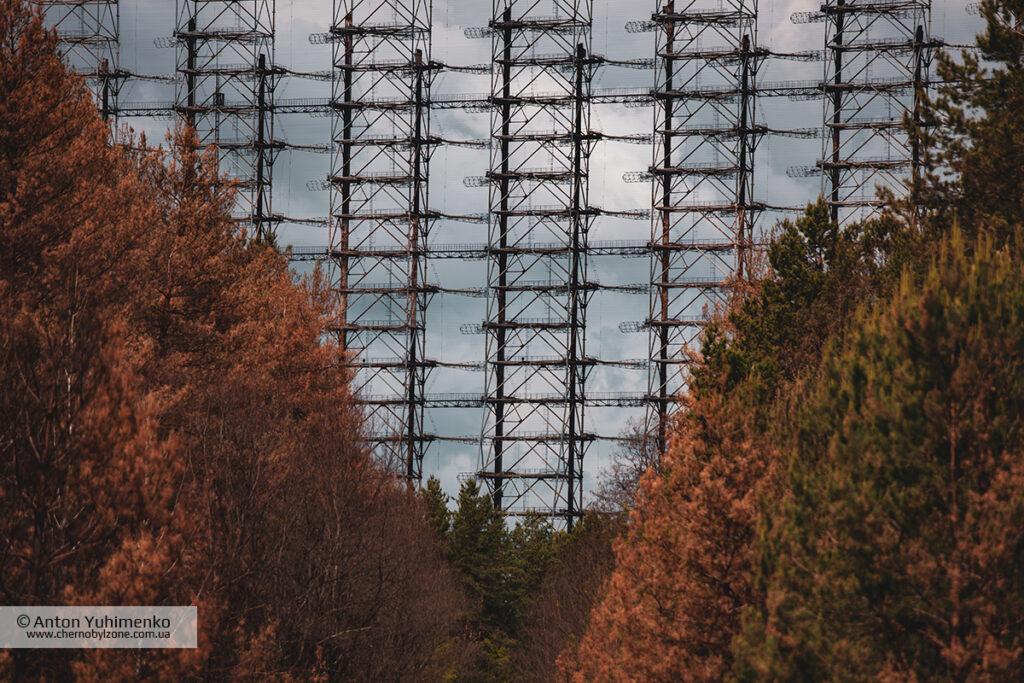 Сгоревший лес возле Дуги